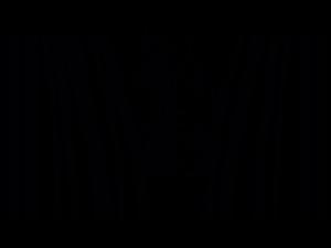cebra codigo de barras